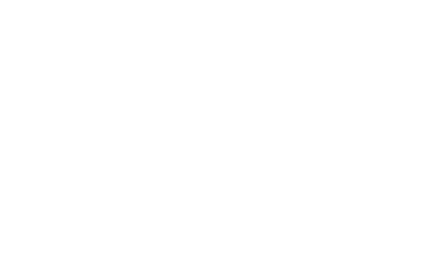 CORONA CLEAN WAVES